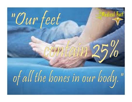 25% Bones